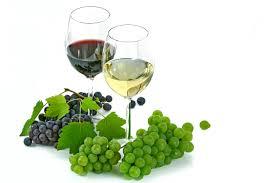 La Fiera del Vino torna a Milano